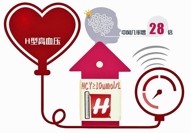 H型高血压管理与脑卒中预防