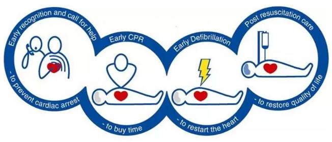 对心脏骤停患者给予肾上腺素反而会使患者发生脑损伤的风险增加一倍?